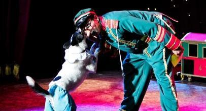 Popovich Comedy Pet Theater Promo Codes and Discount Tickets