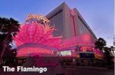 Flamingo Las Vegas Promotion Code – 2 Free Daily Breakfast Buffets