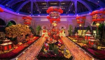 Bellagio Conservatory & Botanical Gardens (FREE)